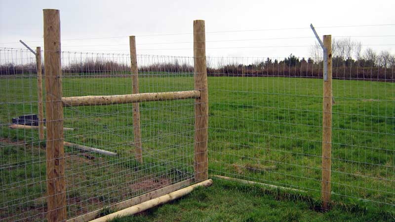 Image of: Garden Dog Fence