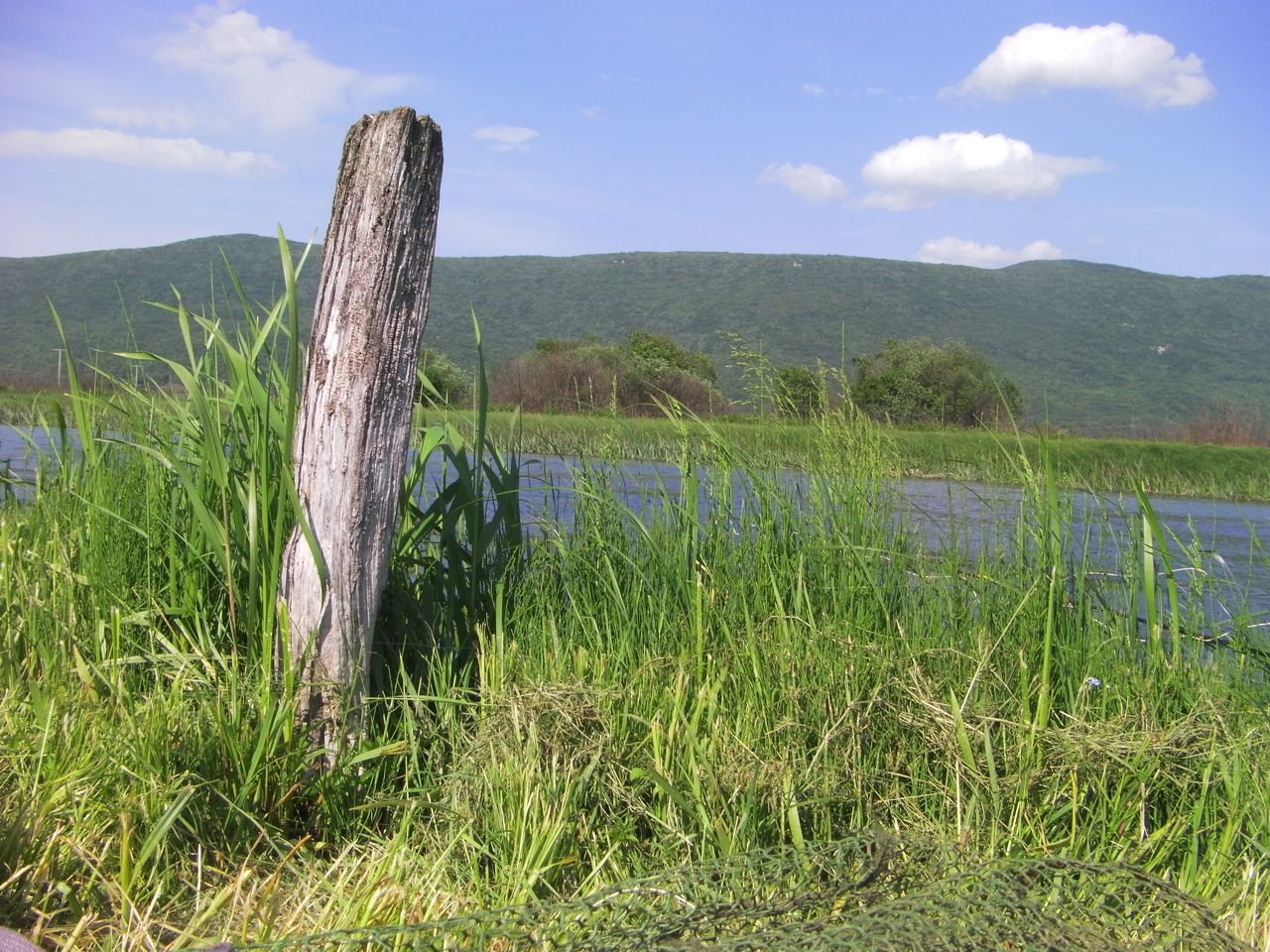 Image of: Good Fence Post