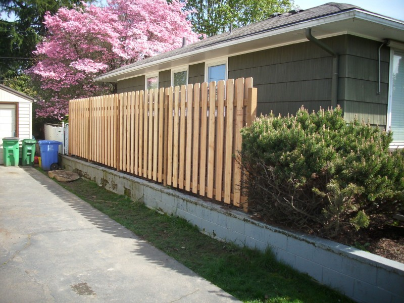 Image of: Good Neighbor Fence Gate Designs Ideas