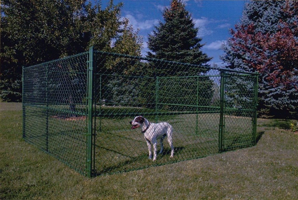 Image of: Green Dog Fence