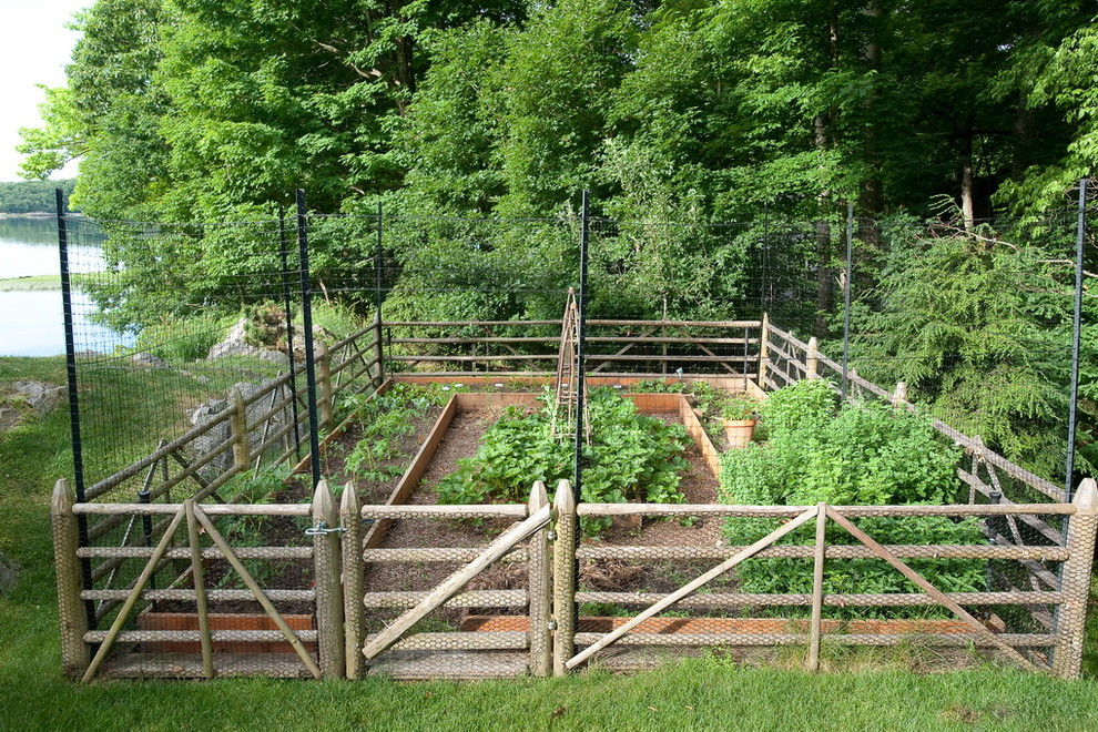 Image of: Hampton Deer Fences