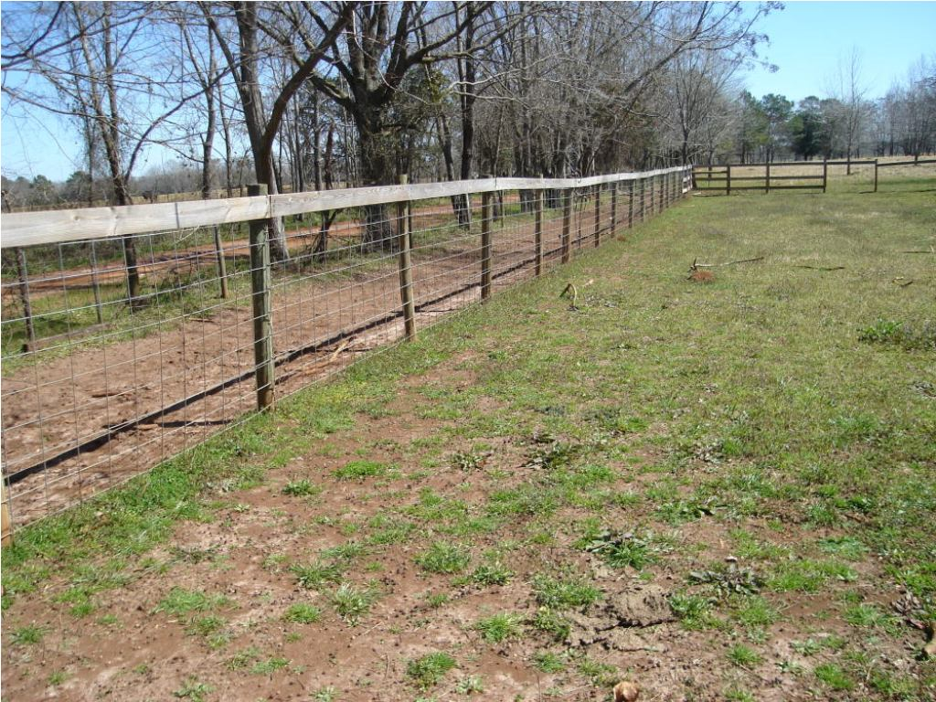 Image of: Hog Wire Fence Panels