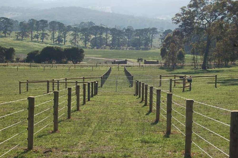 Image of: Horse Fence Yard