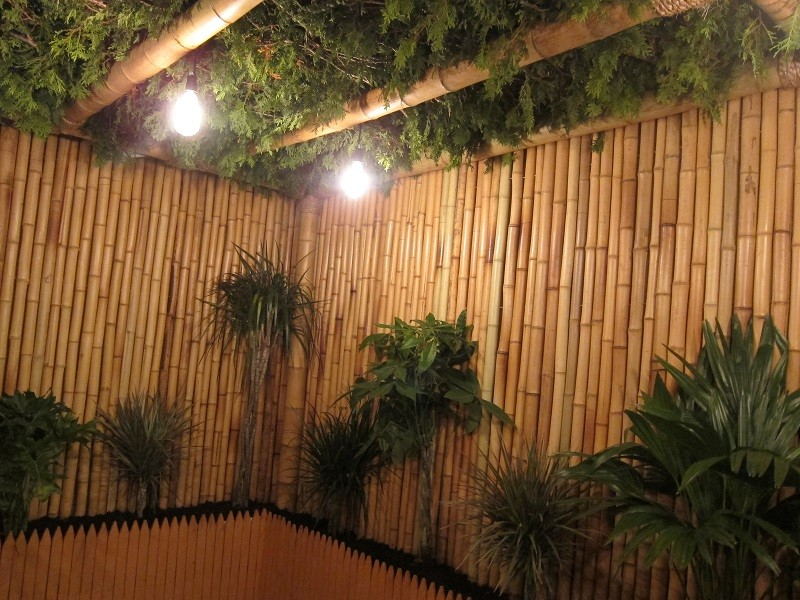 Image of: Ideal Bamboo Fencing Rolls