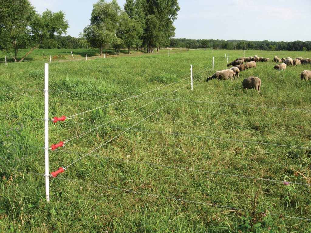 Image of: Installing an Electric Fence