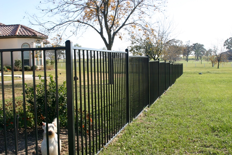 Image of: Iron Fence Panels Outdoor