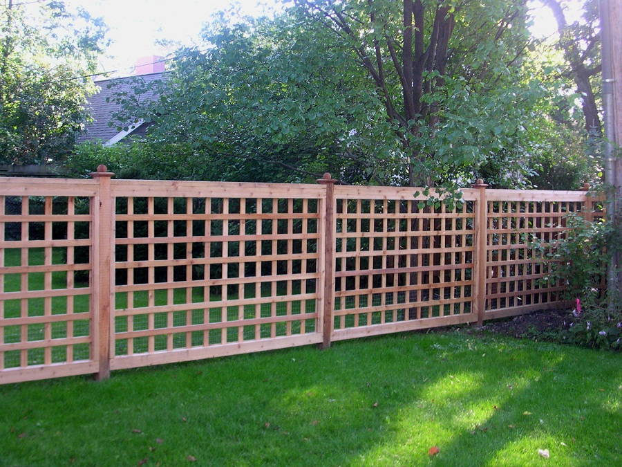 Image of: Lattice Fence Garden