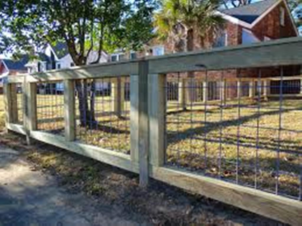 Image of: Living Fences for Livestock Outdoor