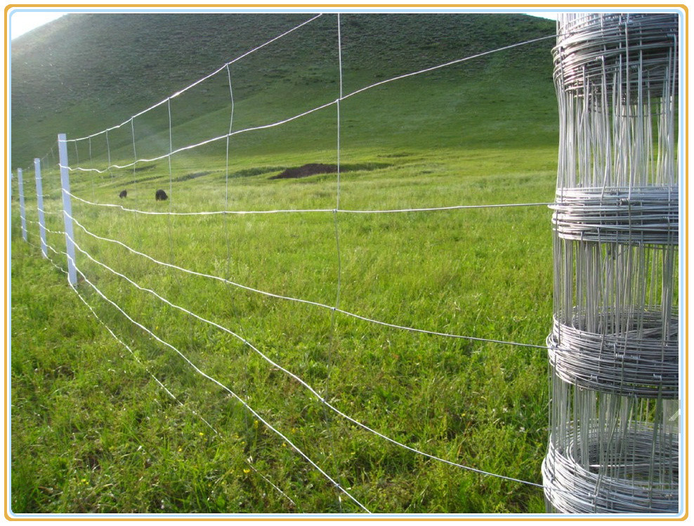 Long Cyclone Fence