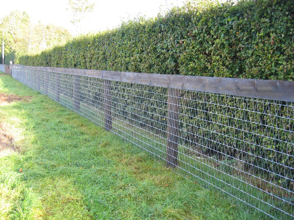 Image of: Mesh Fencing Products