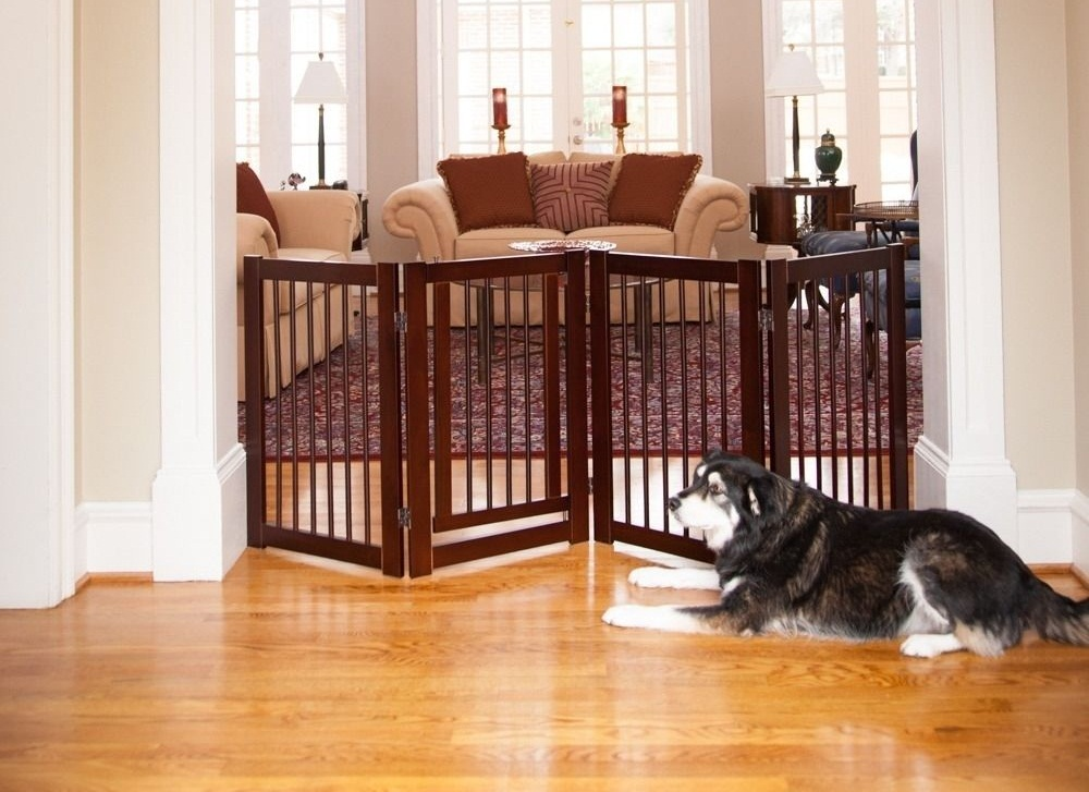 Nice Indoor Dog Fence