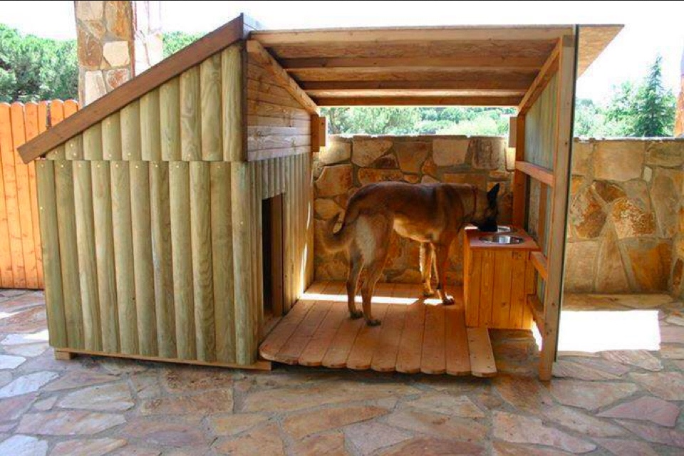 Image of: Outdoor Dog Fence Ideas