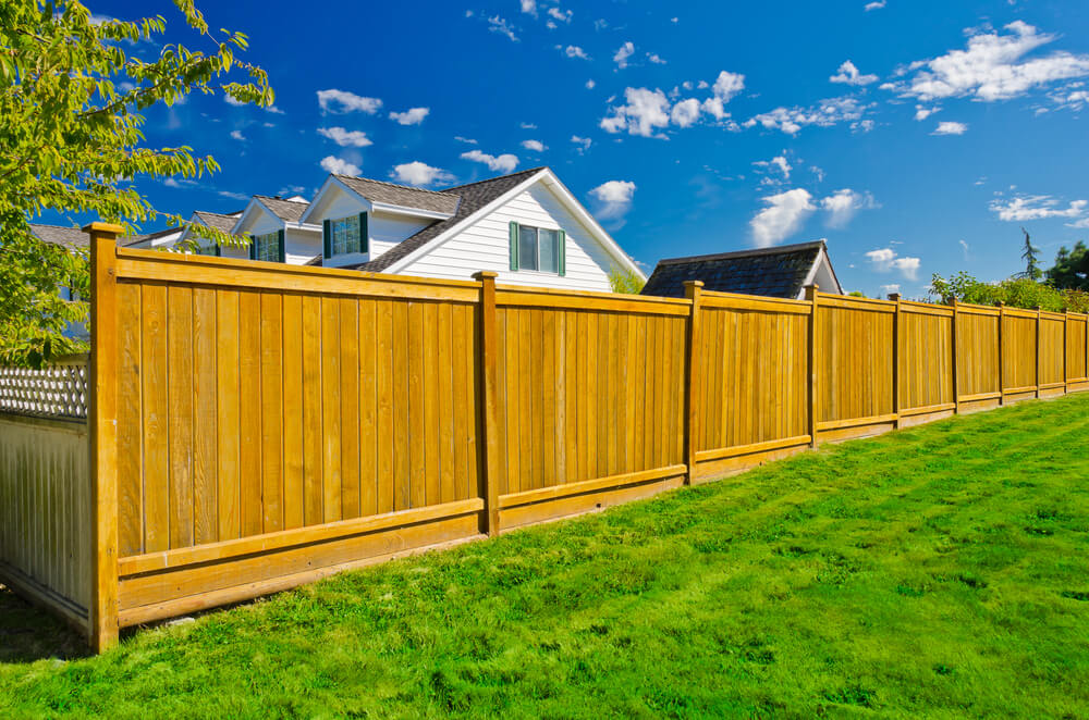 Image of: Painted Privacy Fence Ideas