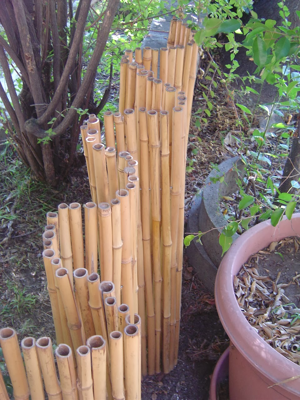Image of: Perfect Bamboo Fencing Rolls