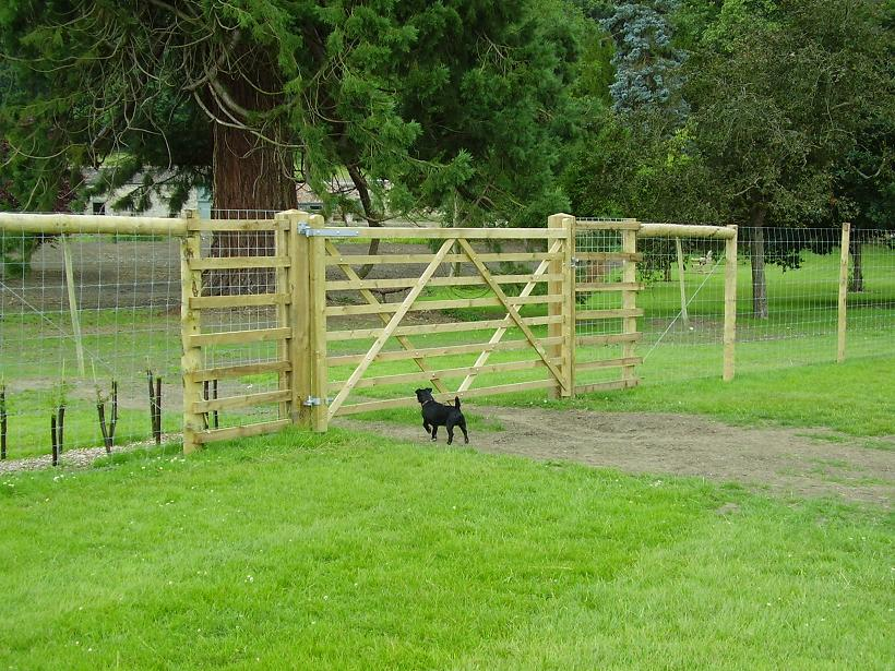 Image of: Popular  Deer Fences