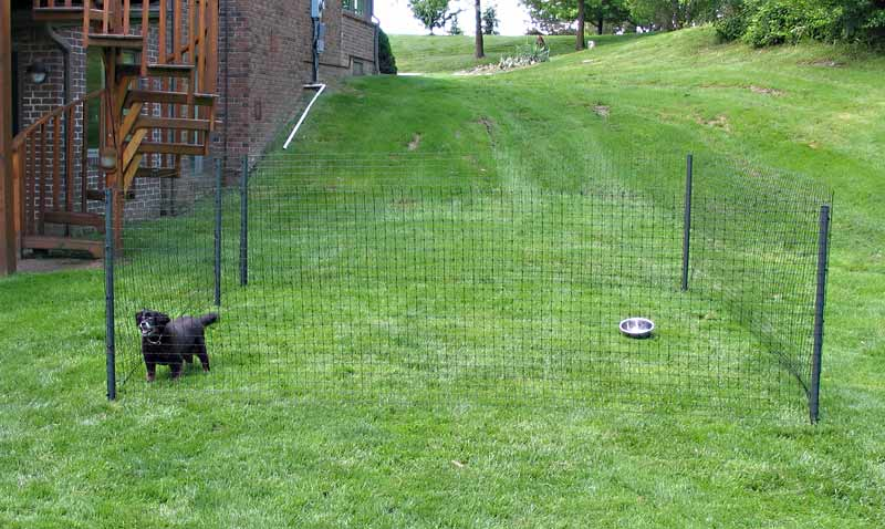 Image of: Portable Dog Fence Wire