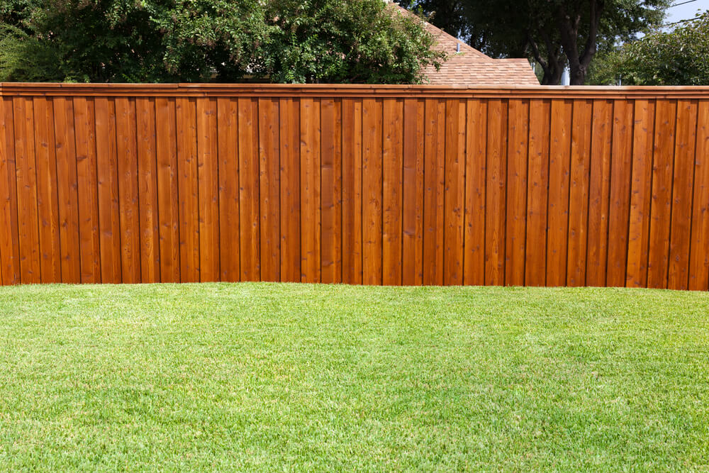Image of: Privacy Fence Ideas Paint
