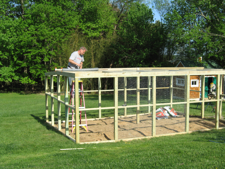 Setting Chicken Wire Fence