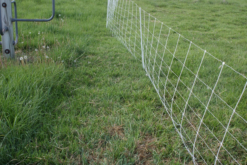 Image of: Small Cyclone Fence