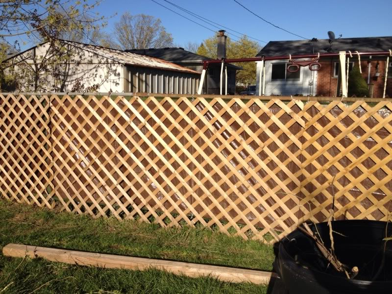 Wonderful Cheap Fencing