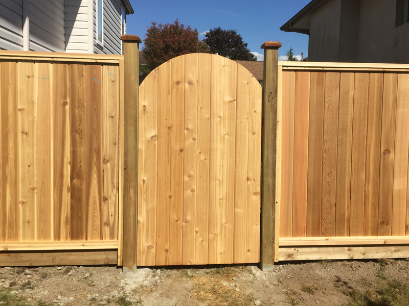 Image of: Wood Cedar Fence Panels