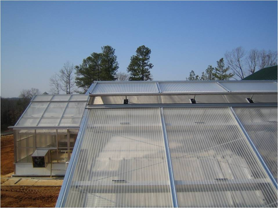 Image of: Acrylic Roof Panels Images