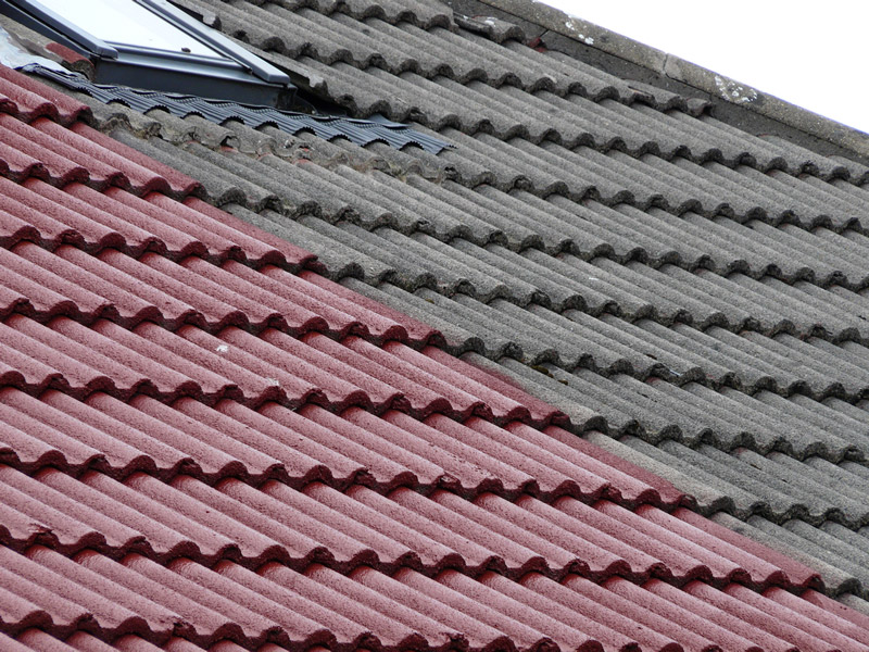 Image of: Aluminum Roof Coating Brush Designs Ideas