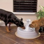 Aqua Cube Pet Fountain Pump