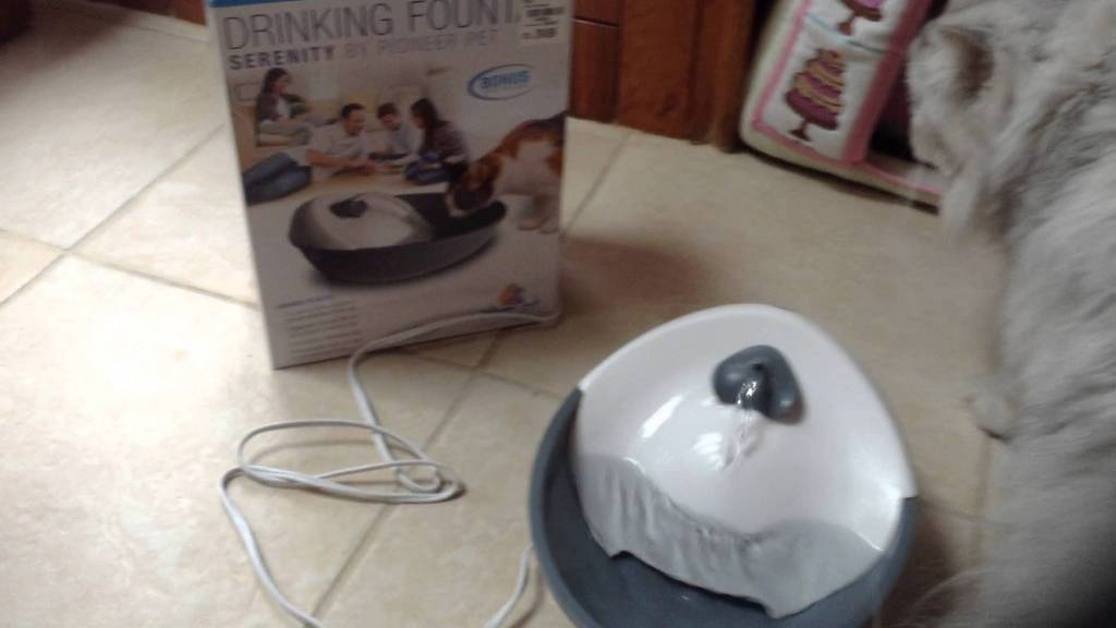 Image of: Aqua Cube Pet Fountain Pump Replacement