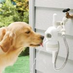 Automatic Dog Water Fountain Filter
