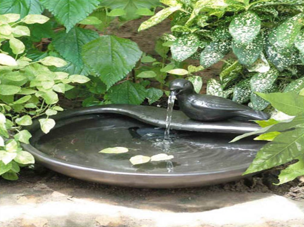 Image of: Backyard Drinking Fountain Kits