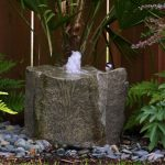 Backyard Drinking Fountain Pictures
