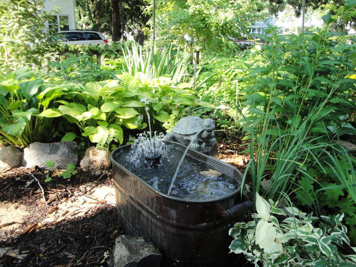 Image of: Beautiful Backyard Fountain Ideas