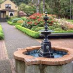 Best Backyard Fountain Ideas