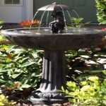 Best Bird Bath Fountain Solar