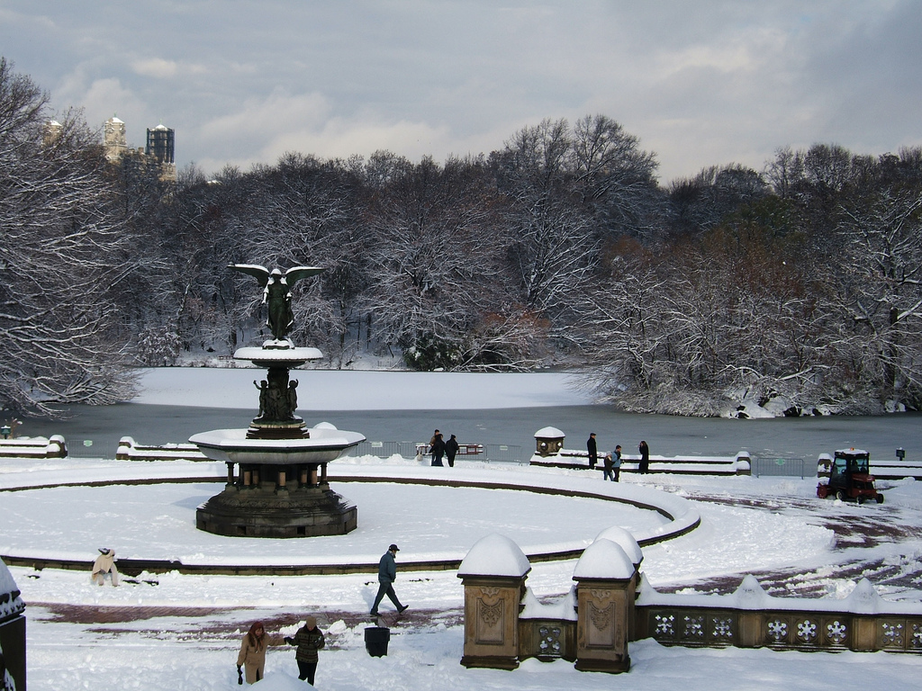 Image of: Bethesda Fountain in Winter