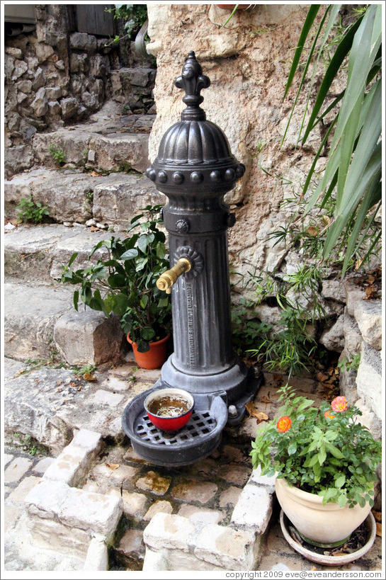 Image of: Big Dog Water Fountain Pump