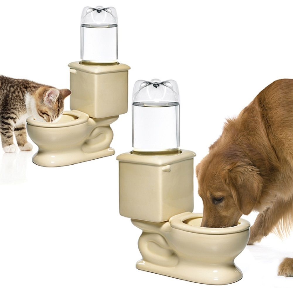 Image of: Big Dog Water Fountain Toilet