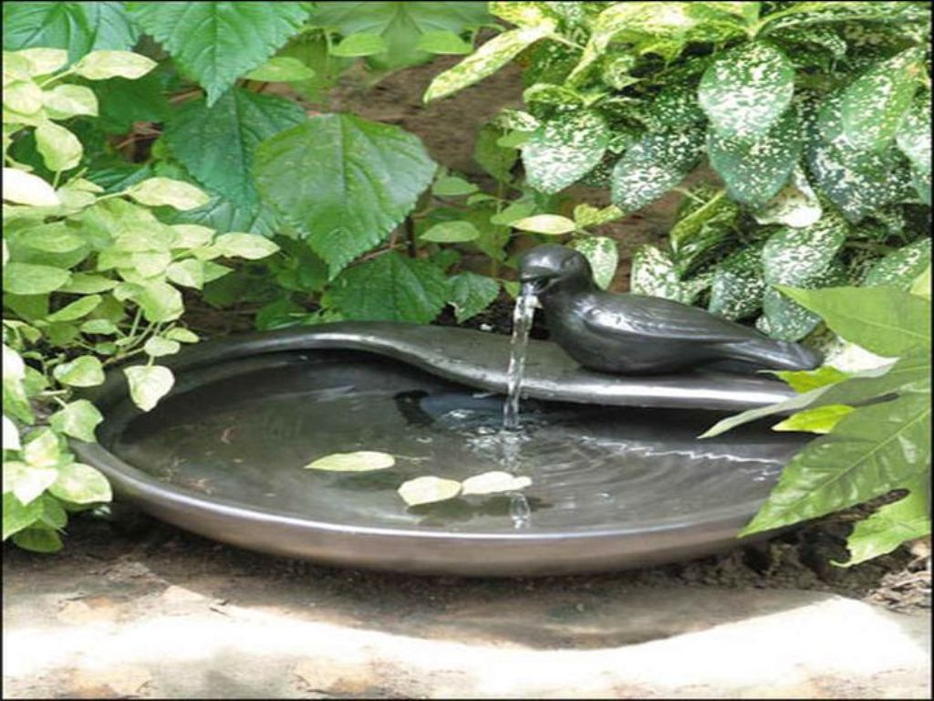 Image of: Bird Bath Fountain Solar Pump Kit
