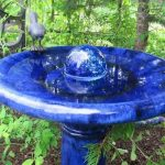 Bird Fountains Water