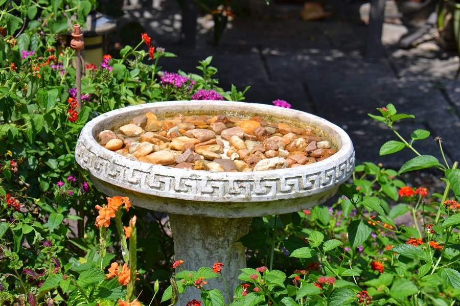 Butterfly Fountain Round