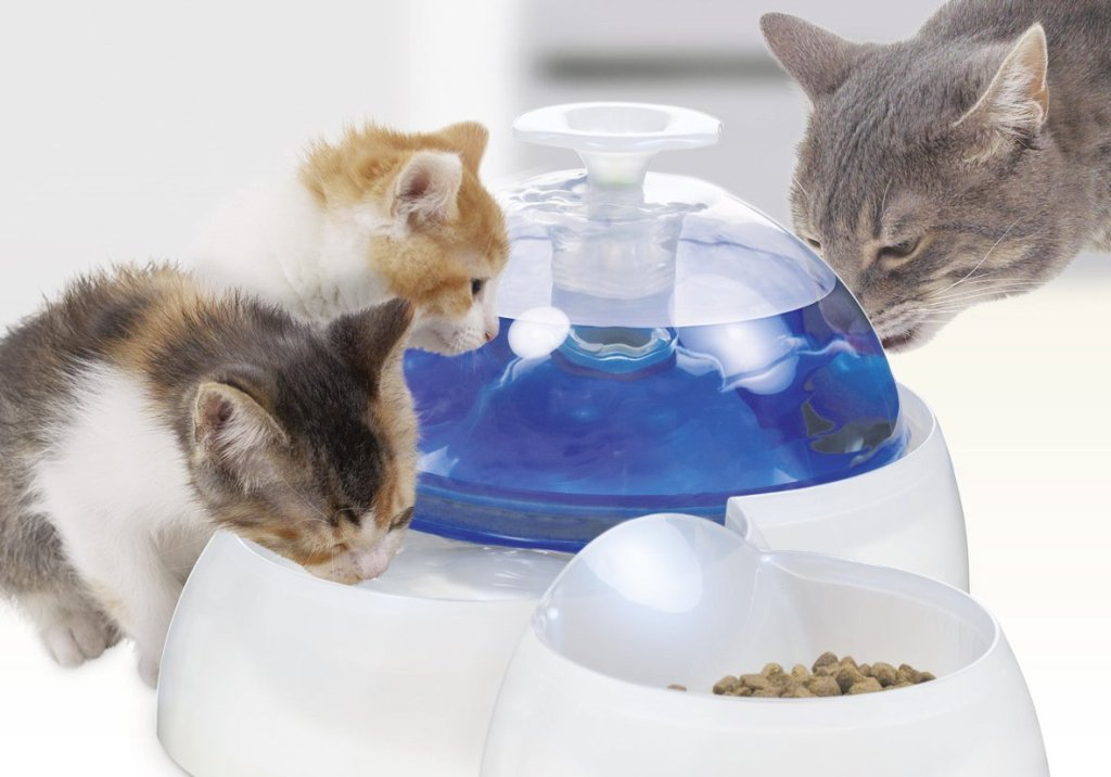 Image of: Catit Cat Drinking Fountain