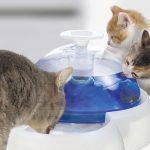 Catit Fountain Drink