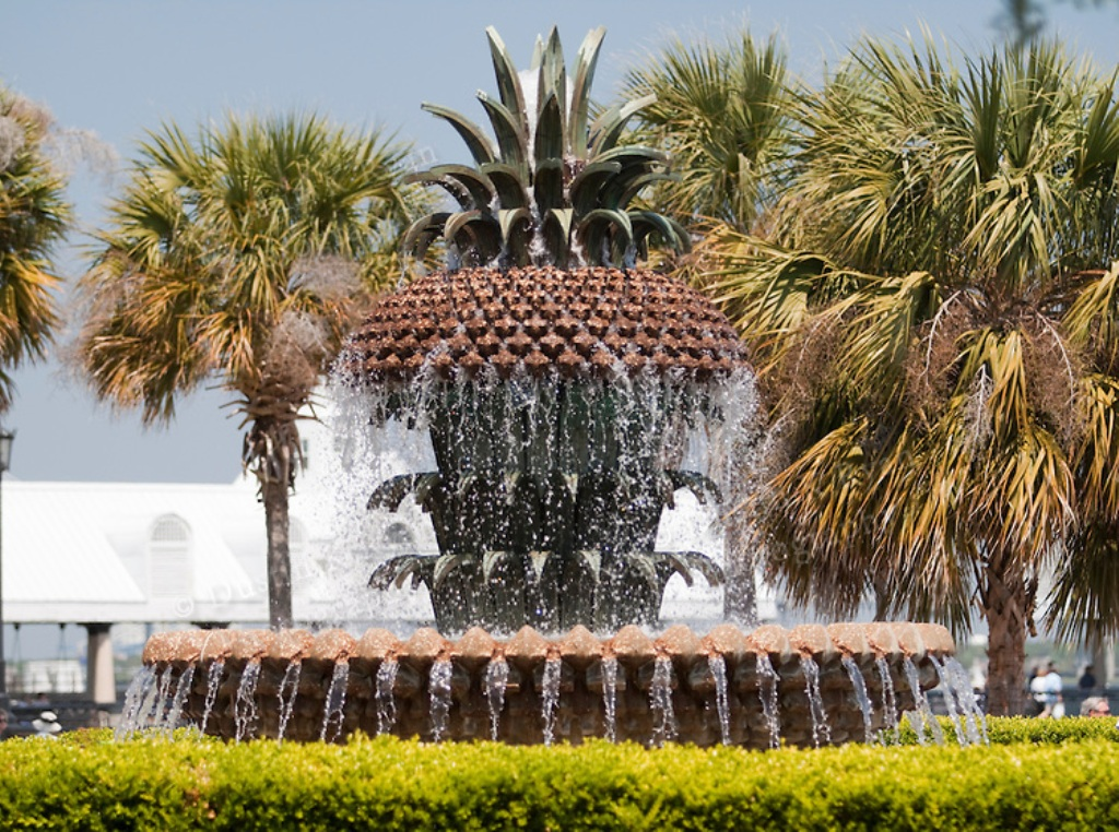 Image of: Charleston Pineapple Fountain Location