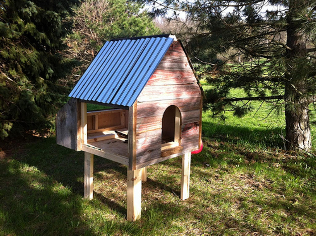 Image of: Chicken Coop Roof Construction