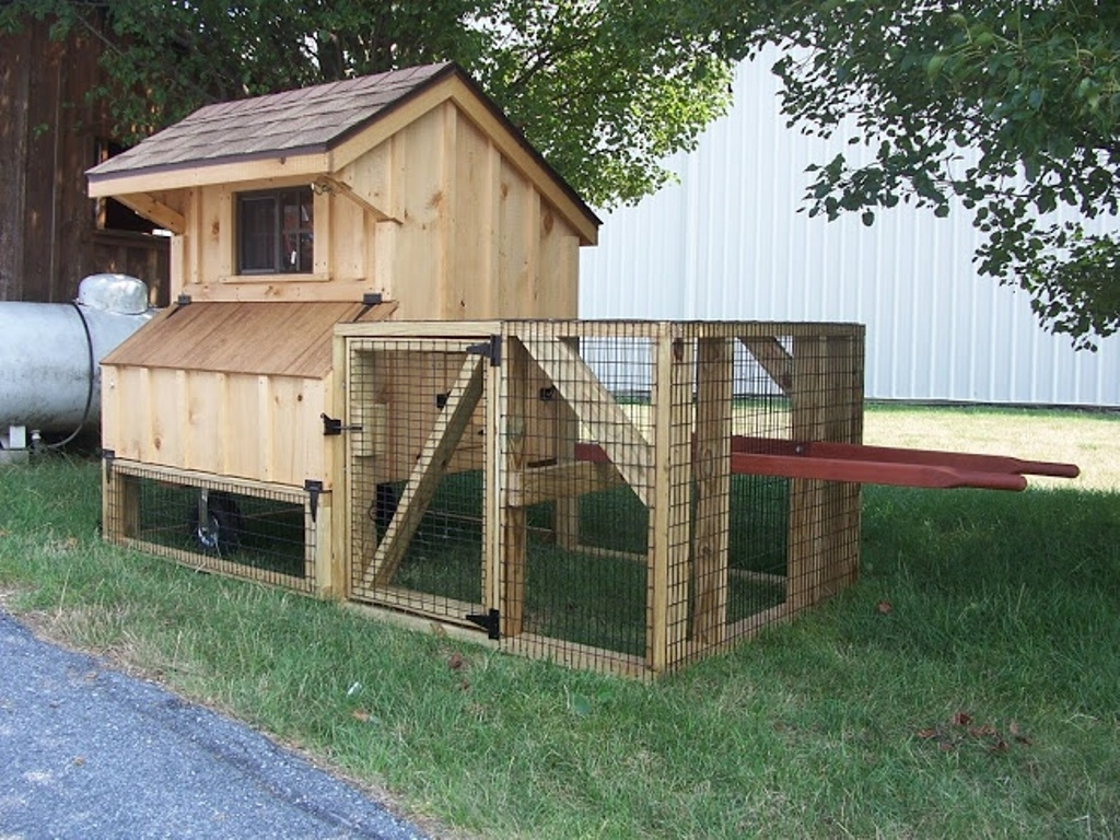 Image of: Chicken Coop Roof Design