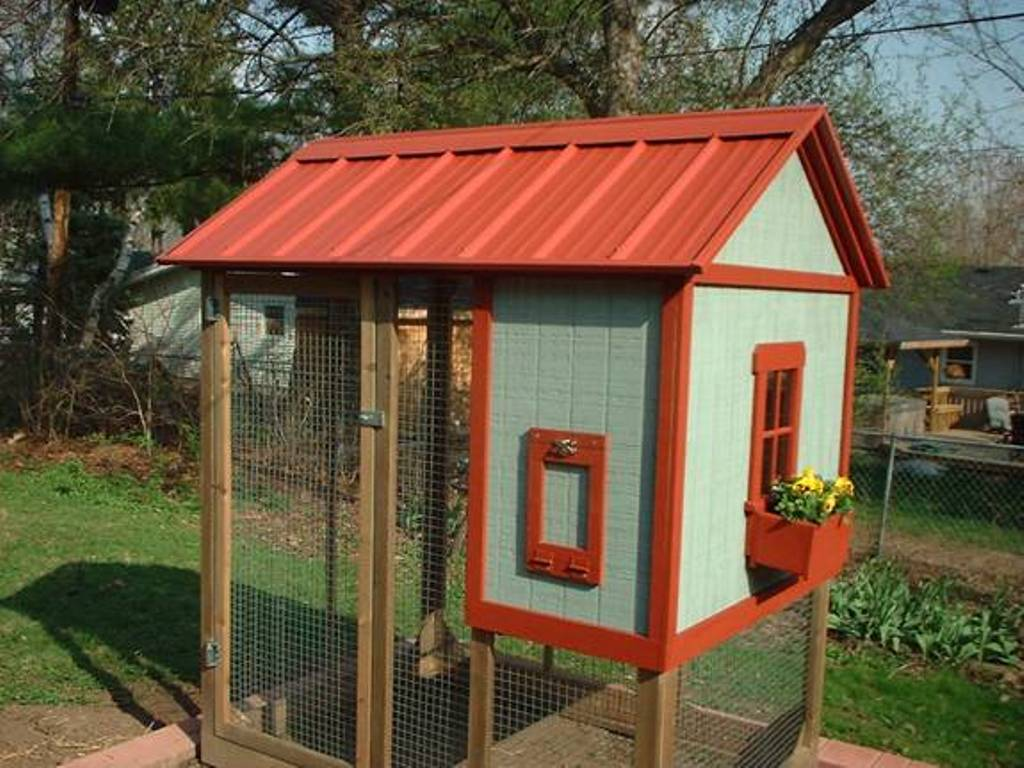 Image of: Chicken Coop Roof Ideas