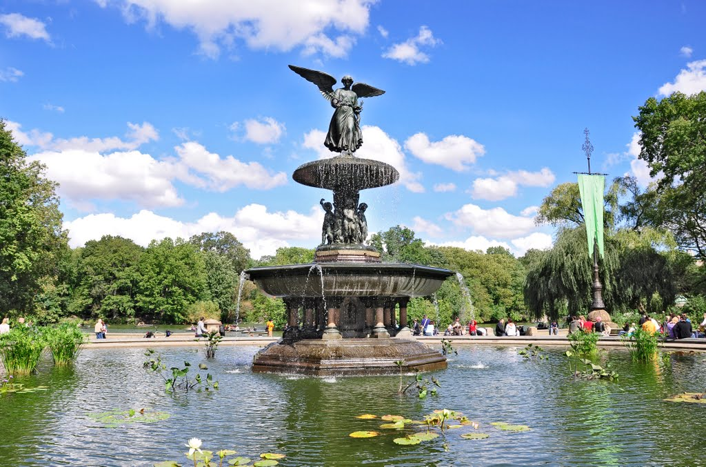 Image of: Commercial Bethesda Fountain