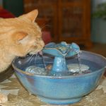 Fresh Ceramic Cat Water Fountain