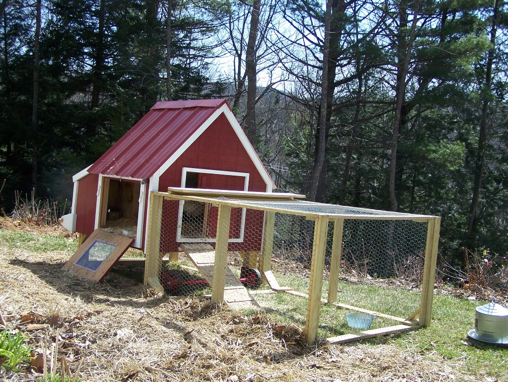 Image of: Insulating Chicken Coop Roof